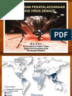 Diagnosis dan penatalaksanaan demam berdarah dengue pada anak