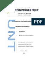 Informe Practica 17 CUERPOS CETÓNICOS EN ORINA