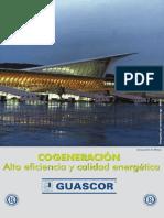 Cogeneracion PDF