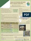 Update of green turtle interactions with marine debris in Uruguayan coastal waters