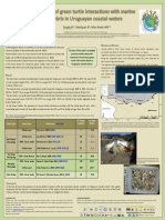 Update of green turtle interactions with marine debris in Uruguayan coastal waters