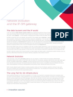Network Evolution and the IP-SM Gatway