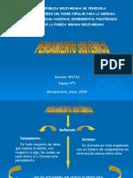 Pensamiento Sistemico 4.1
