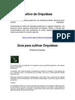 Cultivo de Orquídeas (2)