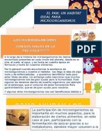 015 El Pan, Un Habitat Ideal Para Los Microorganismos