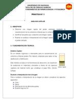 Informe-3-Fitoquímicater