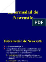 Virus de Newcastle