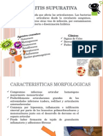 ARTRITIS Anatomia Patologica Completa