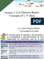 Modulo 2 Los Numeros Reales