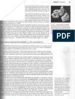 neurociencia2.pdf
