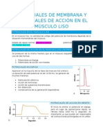 Potenciales de Membrana y Potenciales de Acción en El Músculo Liso