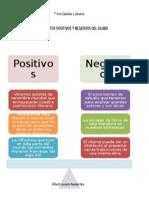 Aspectos Positivos y Negativos Del Sílabo