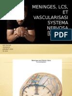 SLIDE Meninges, LCS, Et Vascularisasi