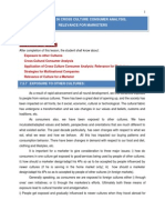 CROSS CULTURE MARKET ANALYSIS.pdf