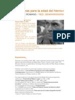Curriculum Enrique Romano