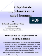 T. Artrópodos