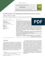 Proanthocyanidins and a Phloroglucinol Derivative From Rumex Acetosa L