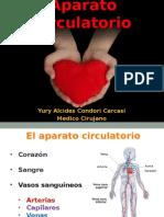 Aparato Circulatorio para enfermeras 2015