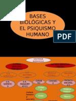 Diapositivas-Psicologia-parte-3.pptx