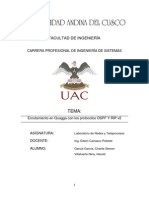Informe de Quagga Villafuerte Garcia