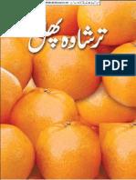 Cult Citrus Fruit (Iqbalkalmati.blogspot.com)
