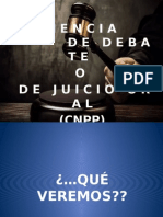 Audiencia Juicio Oral