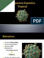 Neuro - m1 Paraparesia Espástica