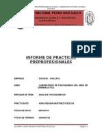 Informe de Praciticas Divincri - Regina