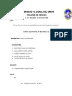 Informe de Cultivo (1)