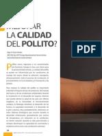 Calidad Pollito(2)