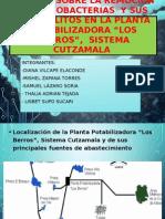 cianobacterias-2