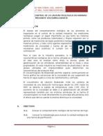 CONTROL-DE-CALIDAD-DE-LAS-HARINAS.docx