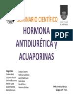 Seminario Científico AQP y ADH
