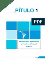 Capitulo1 PMA 2015