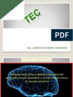 TEC UFR...pdf