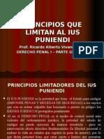 Principios Derecho Penal i(1)