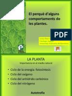 El porqué de algunos comportamientos de las plantas