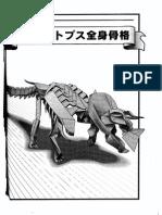 Triceratops Skeleton - Yoshino Issei
