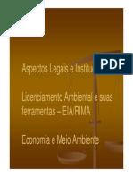 Aula 10 Eiarima Aspectos Legais, Institucionais e Econômicos 2014 [Modo de Compatibilidade]