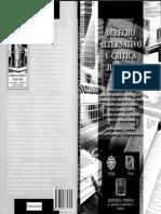 Torre Rangel (org) - Direito Alternativo e Crítica Jurídica.pdf