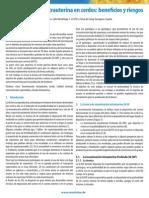 LA+INSEMINACÍON+INTRAUTERINA+EN+CERDOS+-+BENEFICIOS+Y+RIESGOS