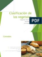 Clasificación de Los Vegetales