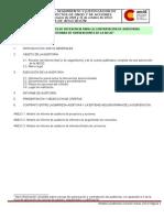 TdR e Informe Auditoria Marzo 2013