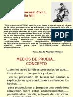 Prueba Documental Informativa y Confesional
