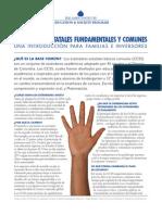 documentdetail (1)