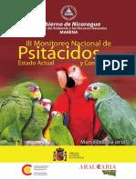 Loros Nicaragua