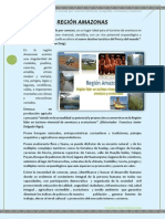Modulo Amazonas - Conglomerado-borrados Orincipal Aaa-PDF-borrador Unooooo
