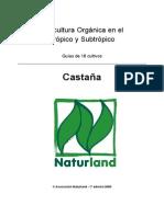 castana_2005