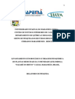 Capa e Resumo- Relatorio Final 2011
