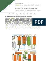 esquema deshidrogenizacion